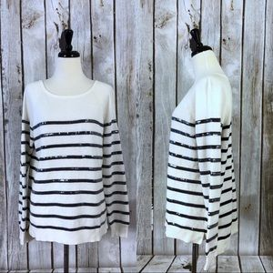 Ann Taylor Sequin Striped Sweater